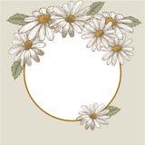 背景高雅重点邀请浪漫符号温暖的婚礼 美丽的开花的花 10个看板卡eps问候例证向量葡萄酒 框架 图库摄影