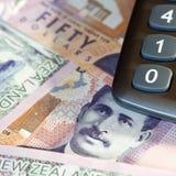 背景鸟硬币以蕨图标式的查出的猕猴桃为特色的货币美元离开货币新的银符号二白色西兰 库存照片