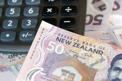 背景鸟硬币以蕨图标式的查出的猕猴桃为特色的货币美元离开货币新的银符号二白色西兰 免版税库存照片