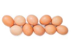 背景鸡蛋查出白色 库存照片