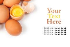 背景鸡蛋查出白色 免版税库存图片