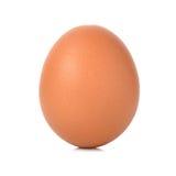 背景鸡蛋查出的壳白色卵黄质 库存照片