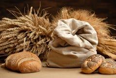 背景麦子 免版税图库摄影