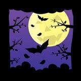 背景黑暗的森林月亮晚上 免版税库存图片