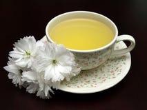 背景黑暗的花卉春天茶 免版税库存图片