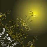 背景黑暗的花卉绿色 图库摄影
