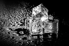 背景黑色多维数据集冰湿 选择聚焦 定调子 免版税库存照片