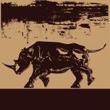 背景黑色犀牛 库存照片