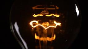背景黑色电灯泡高智能光 影视素材