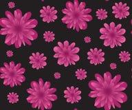 背景黑色花变粉红色无缝 库存图片