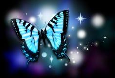背景黑色蓝色蝴蝶闪闪发光 免版税库存照片
