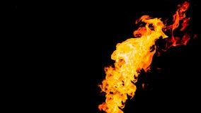 背景黑色详细资料火软绵绵地发火焰好高亮度显示垂直 在被隔绝的黑背景的火 火样式 皇族释放例证