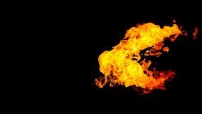 背景黑色详细资料火软绵绵地发火焰好高亮度显示垂直 在被隔绝的黑背景的火 火样式 库存例证
