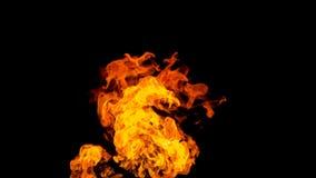 背景黑色详细资料火软绵绵地发火焰好高亮度显示垂直 在被隔绝的黑背景的火 火样式 向量例证