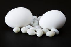 背景黑色鸡蛋 图库摄影