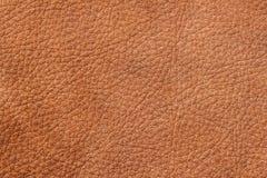 背景,棕色颜色,真皮表面的样式纹理设计师的 对背景,背景 库存图片