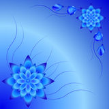 背景,美好的背景,与花的蓝色背景 库存图片