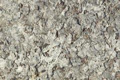 背景-岩石Khibiny断层块表面  图库摄影