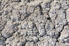 背景-无生命的盐土壤 免版税库存图片