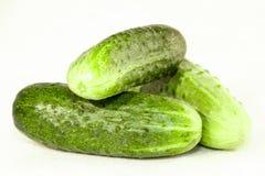 背景黄瓜黄瓜新鲜美有用的蔬菜非常白色 免版税库存照片