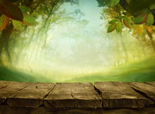 背景绿色春天 库存图片