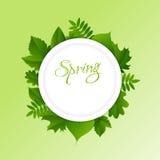背景绿色春天 免版税库存照片