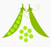 背景绿色查出的豌豆白色 免版税图库摄影