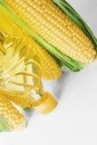 背景黑色玉米下落新鲜的油 免版税库存图片