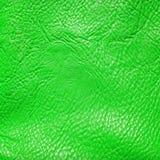 背景绿色皮革自然纹理 免版税库存照片