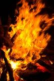 背景黑色详细资料火软绵绵地发火焰好高亮度显示垂直 库存照片