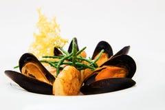 背景黑色calamary鸡尾酒淡菜章鱼塑料海鲜商品 库存照片