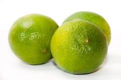 背景dof绿色石灰浅白色 免版税图库摄影