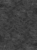 背景eps10例证皮革向量 库存图片
