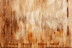背景grunge木头 库存图片