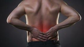 背部疼痛,肾脏炎症,在人` s身体的疼痛 股票录像