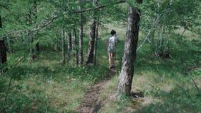背面图:加上在他们的后面的背包在森林里走一条道路 股票录像
