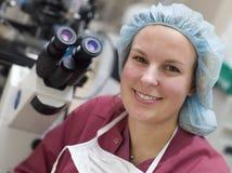 胚胎学家纵向 免版税图库摄影