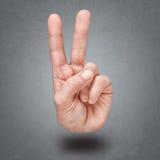 胜利和和平手势  免版税库存图片
