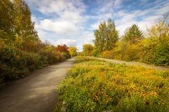 胜利大道在公园在秋天, Asbest,俄罗斯镇  免版税库存照片