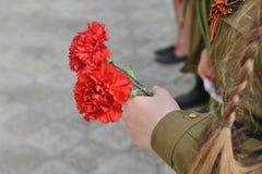 胜利天,孩子剪影有一支红色康乃馨的 免版税库存图片