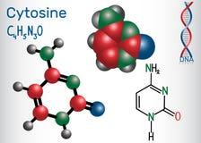 胞嘧啶C -嘧啶nucleobase,基本元件 皇族释放例证