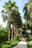 胡同在一个热带庭院里 免版税库存图片