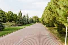胡同在城市公园 免版税图库摄影