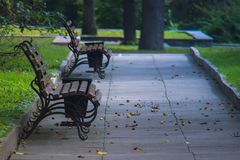 胡同在有长木凳的一个绿色公园 库存图片