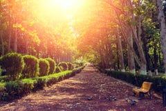 胡同在秋天公园 免版税库存图片