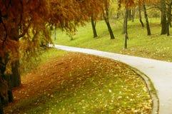 胡同在秋天的公园 库存照片