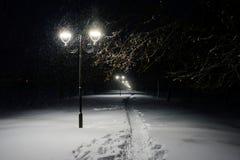 胡同蓝色灯笼晚上公园光亮的射击口气冬天 夜射击 库存照片