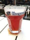 胡哈尔登草稿在大号的比利时啤酒 库存照片