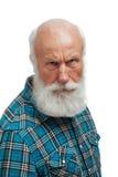 胡子例证长的人老向量 免版税图库摄影
