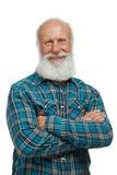 胡子例证长的人老向量 图库摄影